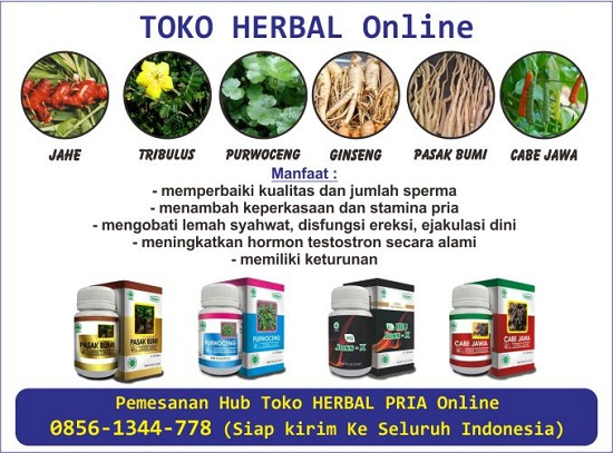 jual herbal penambah sperma